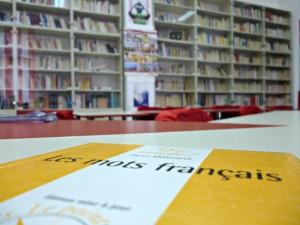 Bibliothèque dans Evénements culturels p1000303-300x225